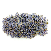 Herbs LAVENDER 15g packet