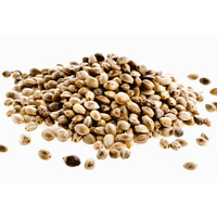 Vegetable Oil HEMP SEED BULK 1kg